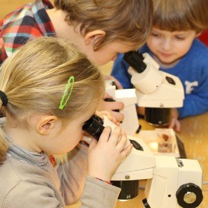Open Morning Microscopes
